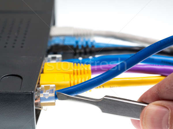 Cat5 cables and router for cyberdefence concept Stock photo © backyardproductions