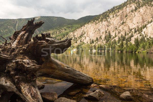 Cottonwood lake near Buena Vista Colorado Stock photo © backyardproductions