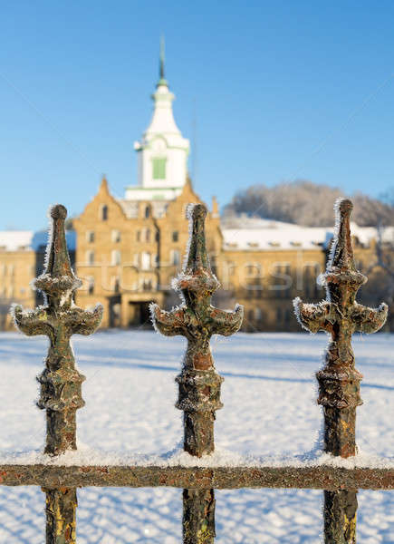 Neve fora lunático West Virginia Foto stock © backyardproductions