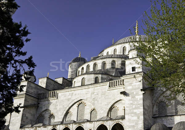 Blue Mosque Domes framed by trees Stock photo © backyardproductions