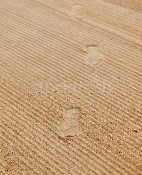Footsteps in rippled sand Stock photo © backyardproductions
