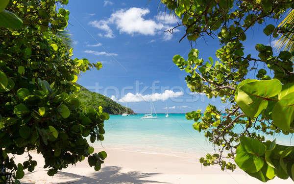 Glorious beach at Anse Marcel on St Martin Stock photo © backyardproductions