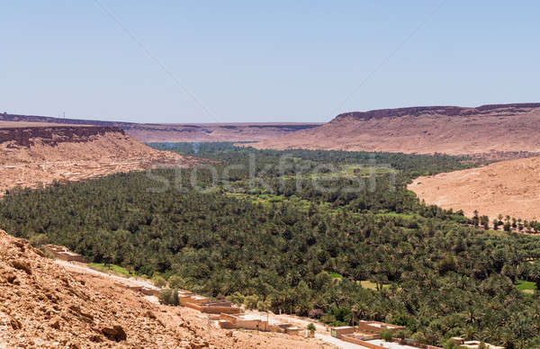 Aoufous in Morocco with green verdant valley Stock photo © backyardproductions