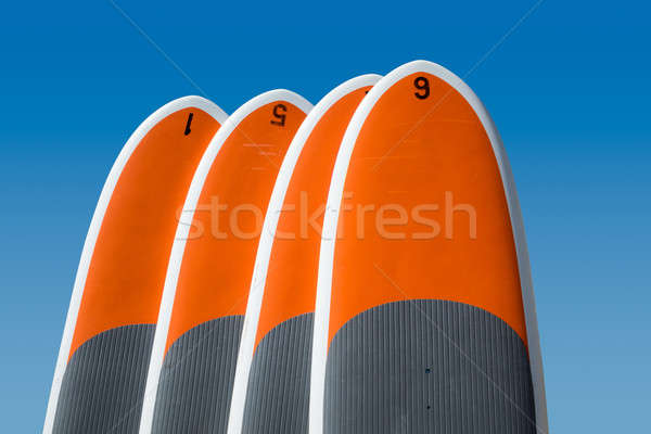 Stock photo: Four stand up paddle boards isolated against blue sky