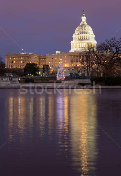 Christmas tree in front of Capitol Washington DC Stock photo © backyardproductions