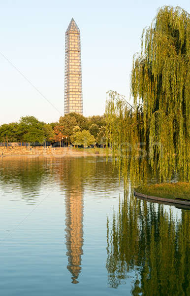 Washington Monument scaffolding reflecting in pool Stock photo © backyardproductions
