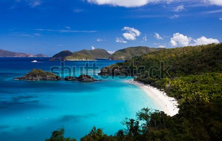 Caribbean eiland Virgin Islands bos zon landschap Stockfoto © backyardproductions