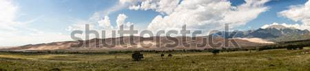 Panorama sabbia ampia alto Foto d'archivio © backyardproductions