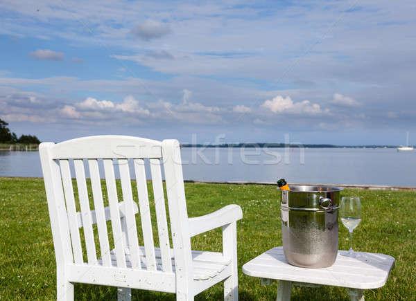 Kert szék pezsgő üres belső udvar jég Stock fotó © backyardproductions