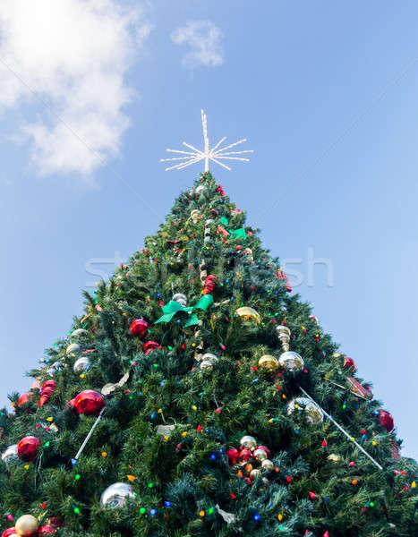 Large decorated external christmas tree Stock photo © backyardproductions