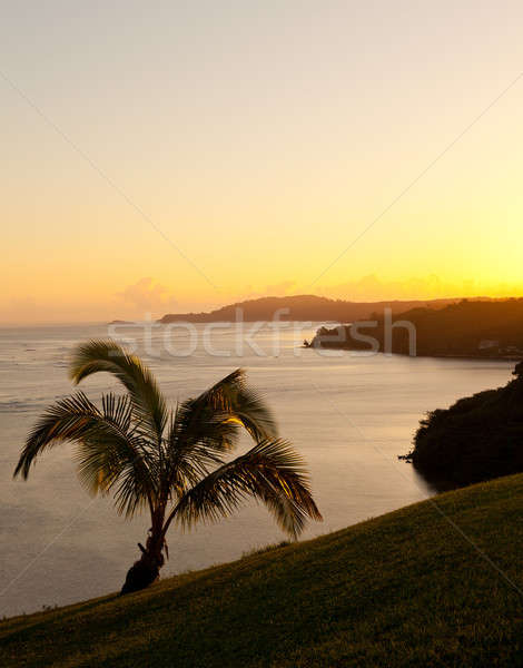 Sunrise in Kauai Stock photo © backyardproductions