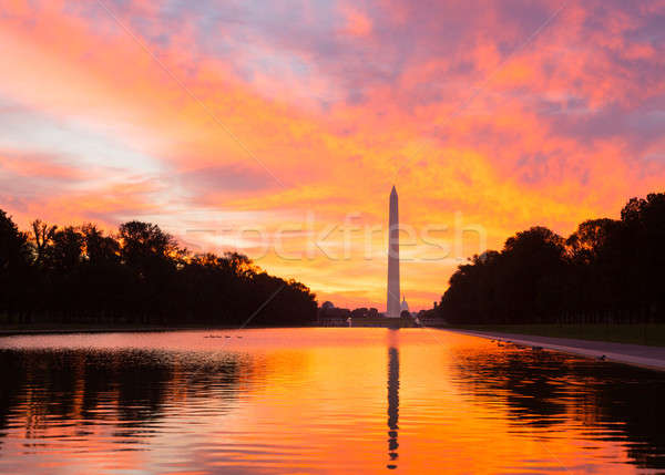Brilliant sunrise over reflecting pool DC Stock photo © backyardproductions