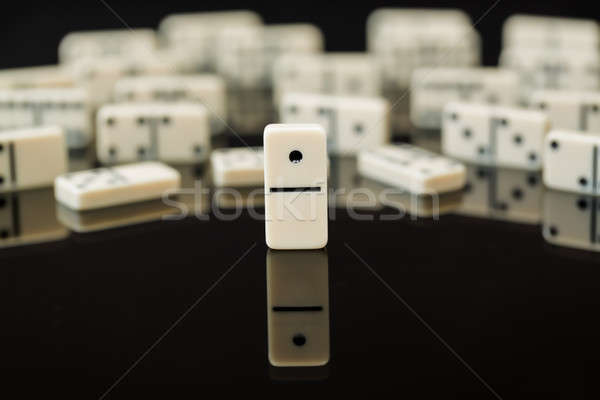 Witte tonen leider winnaar domino Stockfoto © backyardproductions