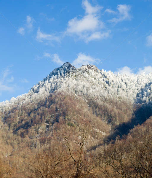 Stock photo: Chimney Tops in snow in smokies