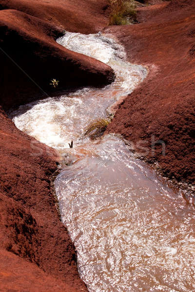 Water cascades in Waimea Canyon Stock photo © backyardproductions