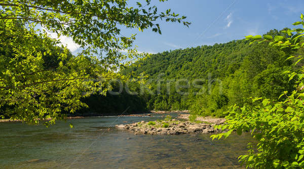 View of Cheat River from Jenkinsburg Bridge Stock photo © backyardproductions