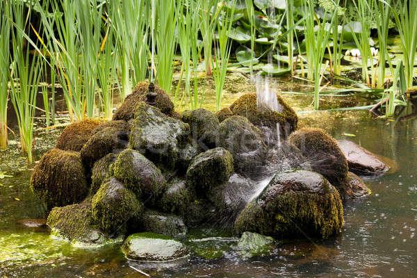 Fountain landing on mossy rocks Stock photo © backyardproductions