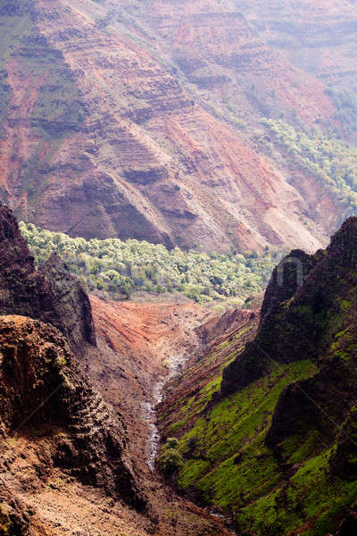 Backlit view down Waimea Canyon Stock photo © backyardproductions