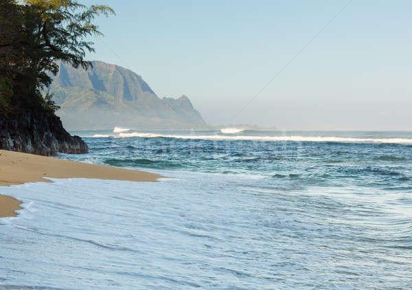 Headland of Hanalei on island of Kauai Stock photo © backyardproductions