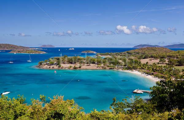 Сток-фото: Панорама · Карибы · острове · Виргинские · о-ва · лес · солнце