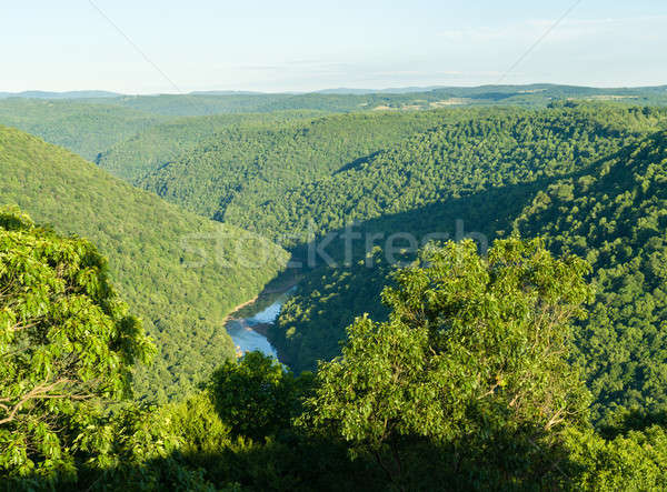 View Raven rock foresta fiume canyon Foto d'archivio © backyardproductions