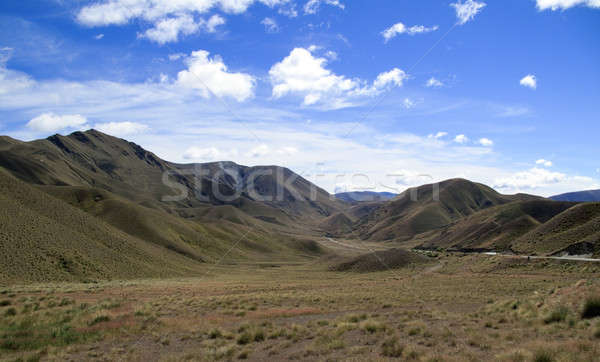 Rolling countryside in New Zealand Stock photo © backyardproductions