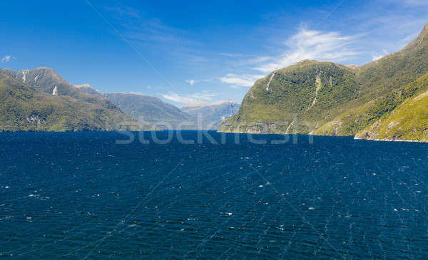 Fjord of Doubtful Sound in New Zealand Stock photo © backyardproductions