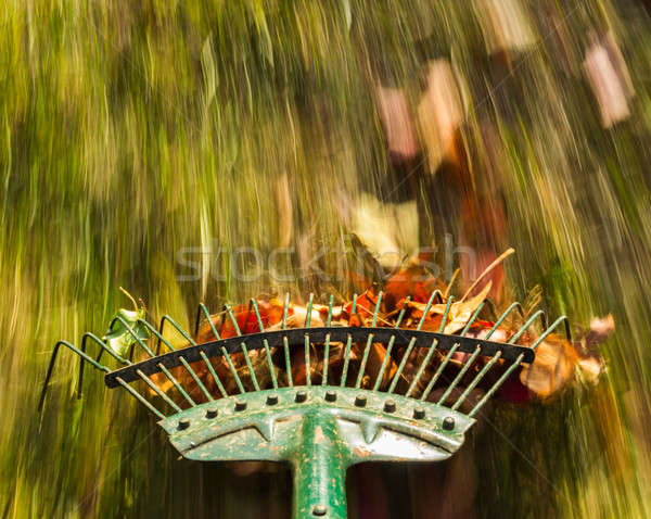 Motion blur on green lawn rake leaves Stock photo © backyardproductions