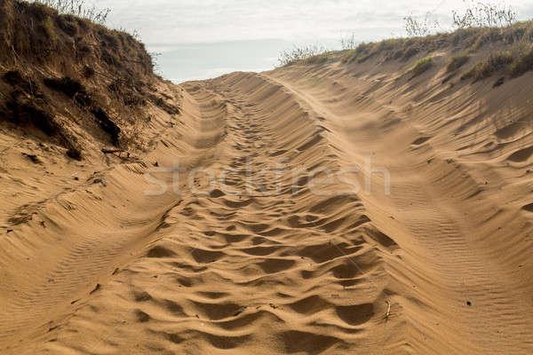Band zand heuvel zanderig weg track Stockfoto © backyardproductions