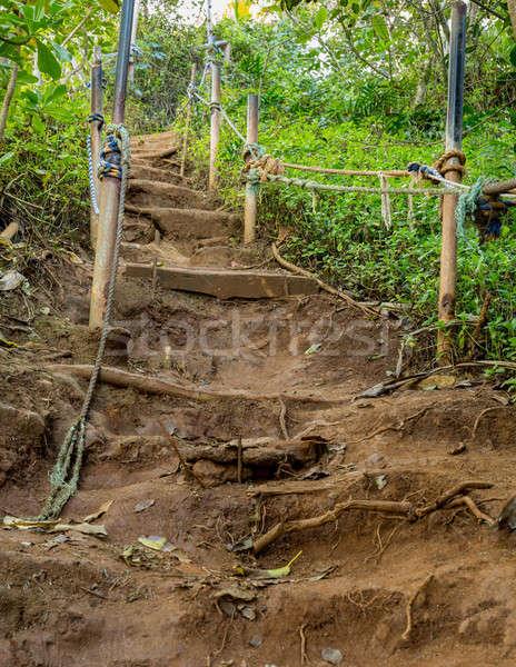 Steep climb on dirt path up hillside Stock photo © backyardproductions