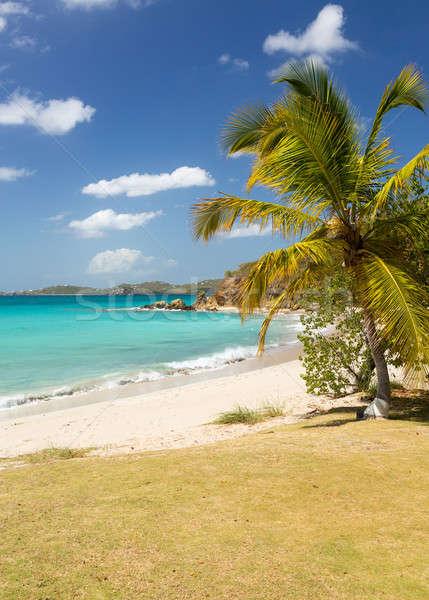 пляж сцена вертикальный острове Виргинские о-ва небе Сток-фото © backyardproductions