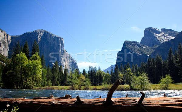 Widoku yosemite dolinie rzeki cedr kolorowy Zdjęcia stock © backyardproductions