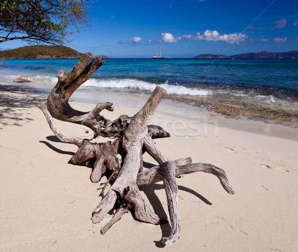 ストックフォト: カリビアン · 島 · バージン諸島 · 太陽 · 風景 · 夏