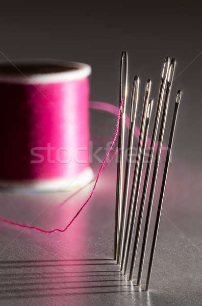 Row of embroidery sewing needles Stock photo © backyardproductions