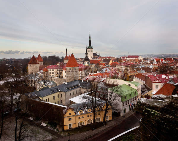 Old town of Tallinn Stock photo © backyardproductions