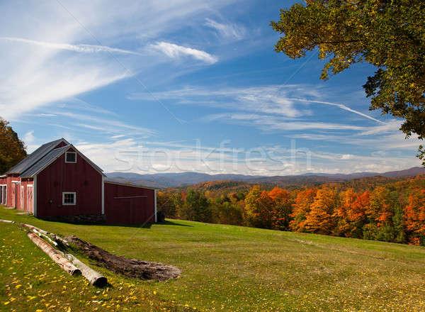 Sonbahar görmek Vermont düşmek yaprakları renk Stok fotoğraf © backyardproductions