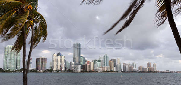 świcie widoku Miami panoramę Cityscape Świt Zdjęcia stock © backyardproductions