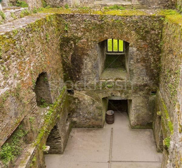 Blarney castle near Cork Stock photo © backyardproductions