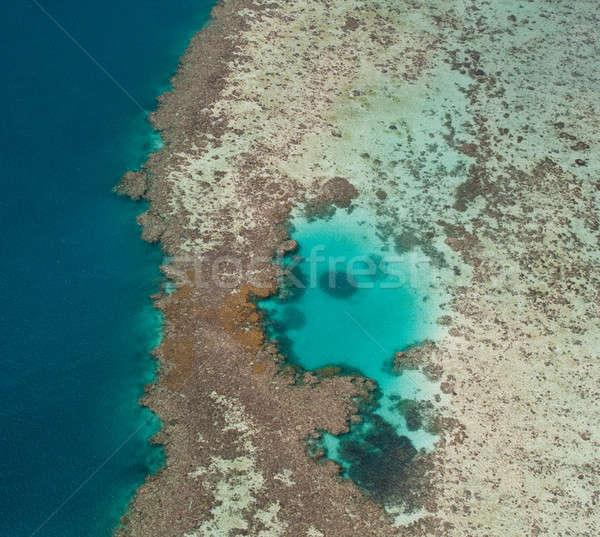 Gran barrera de coral costa Australia mar Foto stock © backyardproductions