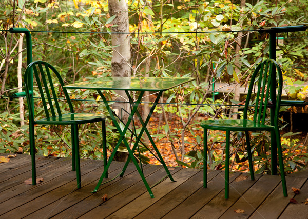 Green table and chairs Stock photo © backyardproductions