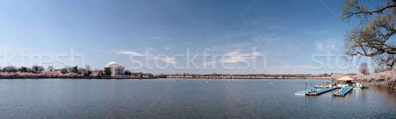 Panorama of Tidal basin with cherry blossoms Stock photo © backyardproductions