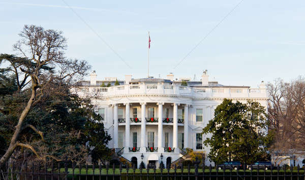 White House at Christmas Stock photo © backyardproductions