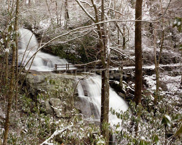 Laurel Falls in Smoky Mountains in snow Stock photo © backyardproductions