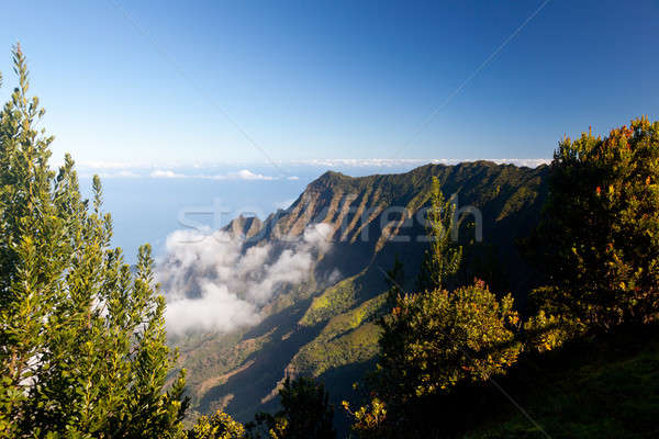 Stock photo: Fog forms on Kalalau valley Kauai