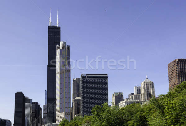 Chicago skyline from the river Stock photo © backyardproductions