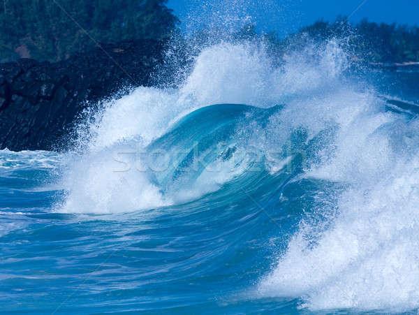 Powerful waves break at Lumahai Beach, Kauai Stock photo © backyardproductions