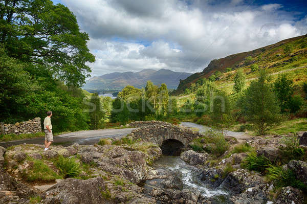 Ponte piccolo stream lake district tradizionale pietra Foto d'archivio © backyardproductions