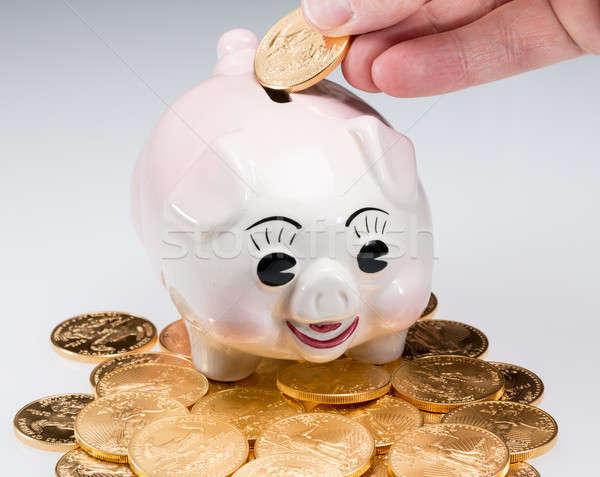 Hand placing gold coin into piggy bank Stock photo © backyardproductions