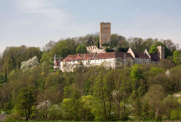 Ruine Ehrenberg in Bad Rappenau Germany Stock photo © backyardproductions