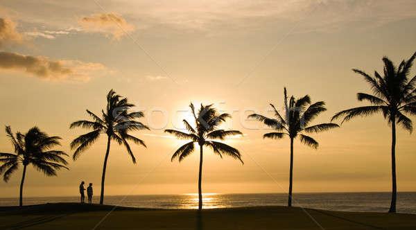 Stock fotó: Pár · Hawaii · naplemente · tenger · pálmafák · előtér